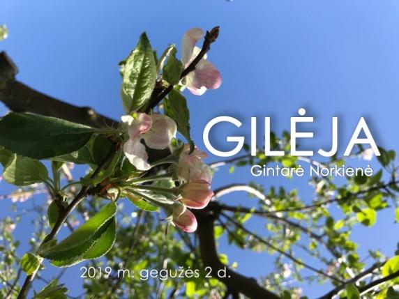 0001_plakatas-gileja_1556885136-8ea74be8eb077e5fbc43f07c08d845af.jpg